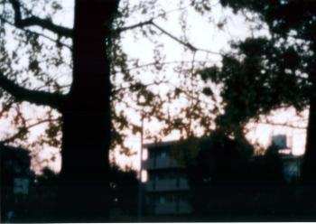 20031223_5.jpg