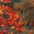 紅葉:奈良談山神社